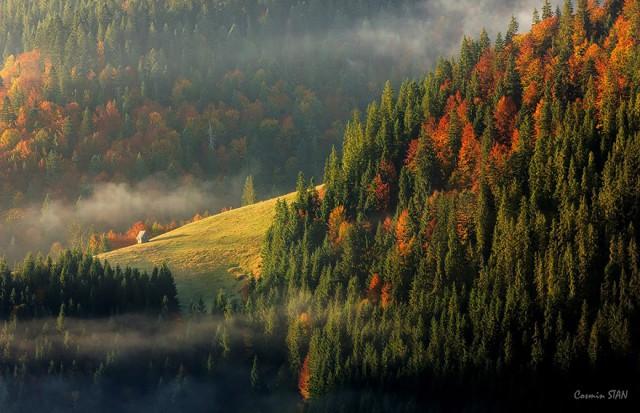 Copyright © Stan Cosmin Ovidiu